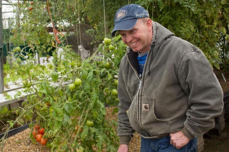 In his aquaponics greenhouse, Iowa farmer Jeff Hafner grows tomatoes, lettuce and other produce year-round, though he has to adjust the varieties as the indoor temperature and humidity change.