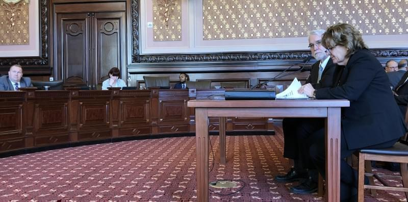 Tim Killeen and Barbara Wilson, respectively the president and executive vice president of the University of Illinois system, spoke with members of a Senate Appropriations Committee Thursday in the state Capitol.