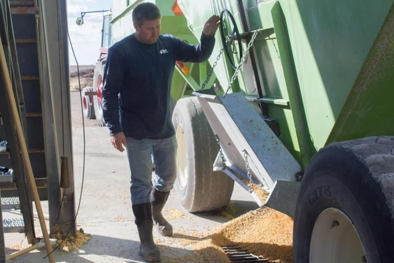 Nick Hadeland opens the hopper on a grain cart pulled into the Key Cooperative in Roland, Iowa on a busy harvest day.