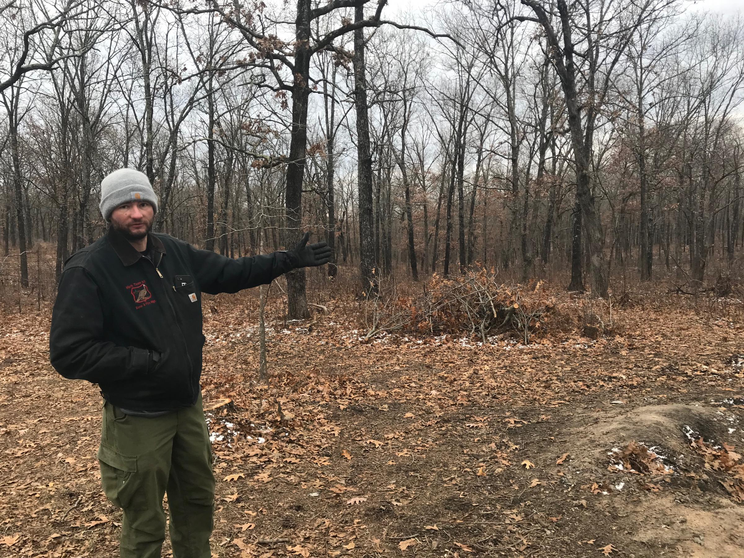 Mark Twain National Forest firefighter Mike Kelly points to a stand of trees in the process of being thinned out to help prevent wildfires.