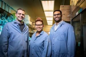 The Illinois team specializes in molecular prosthetics, small molecules that could do the job of missing or deficient proteins. Pictured from left: Professor Martin Burke and graduate students Katrina Muraglia and Rajeev Chorghade.