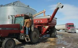Ben Steffen fills a truck with corn that he'll haul to a grain elevator 80 miles away. A silver lining of this long winter is that Steffen can earn a premium for delivering while other farmers are stuck on snow-packed roads.