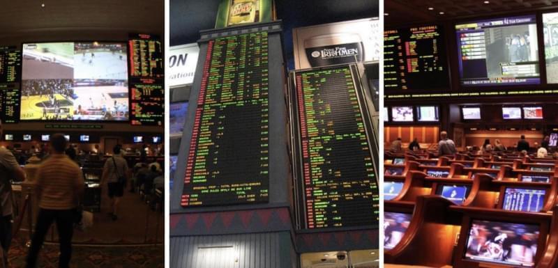 Sports betting public betting raja tamil movie