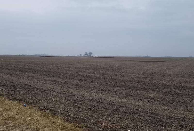 Farm field in Champaign County.