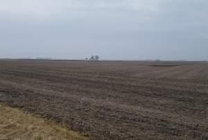 Farm field in Champaign County.