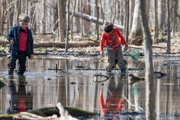 Two boys in rubber boots holding nets stand in a woodland pool .
