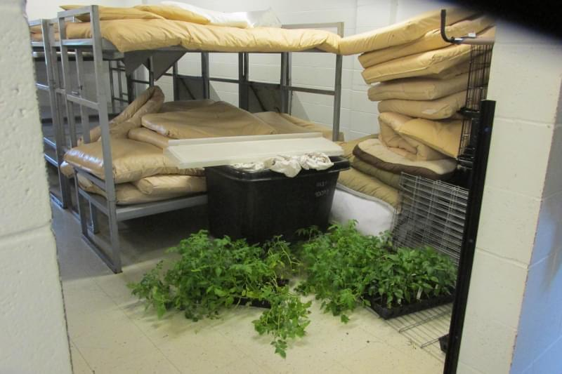 The DuQuoin Impact Incarceration Program can hold up to 300 men. In early May, there were just 28. One of the facility's dorms acts as a storage room for used bunk beds and mattresses.