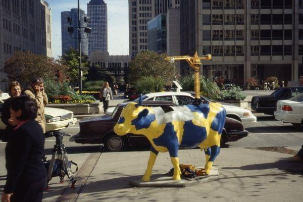 Cows On Parade Art Back In Chicago Illinois