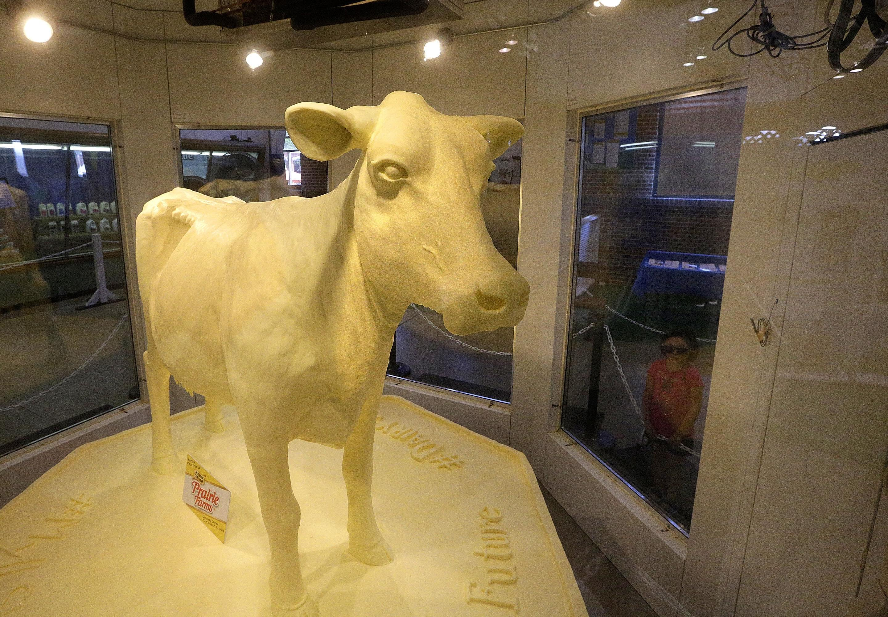 Visitors view the Illinois State Fair Butter Cow designed by Sarah Pratt after the Twilight Parade at the Illinois State Fair Thursday, Aug. 11, 2016, in Springfield, Ill.