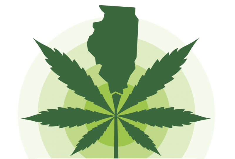 cannabis in Illinois