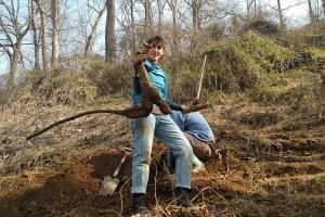 A Kudzu Root Camp participant holds up a hard-won root in North Carolina.