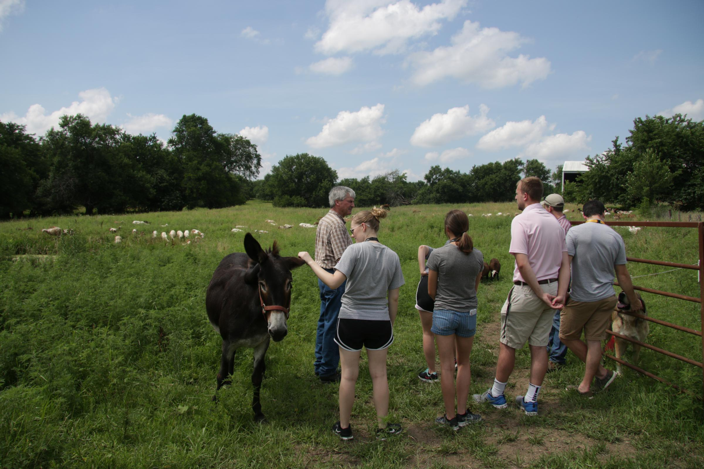 Health professions and medical students from the University of Missouri tour the Maplewood Acres Farm in Sedalia, Missouri.