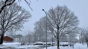 snow, Champaign
