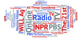 a word cloud listing the various services offered by WILL
