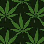 illustration of cannabis leaves