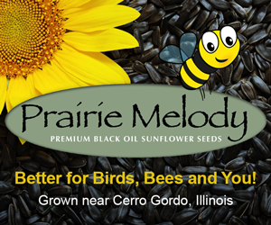 Prairie Melody premium black oil sunflower seeds logo